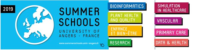 Angers_Summer_School